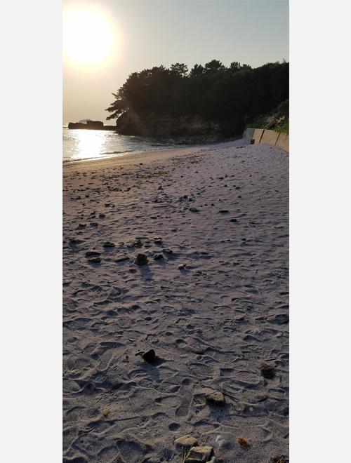 はじめて見た紫色の砂浜…綺麗